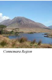 Connemara - Irsko (whiskey)